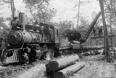 New Mexico Logging Railroads