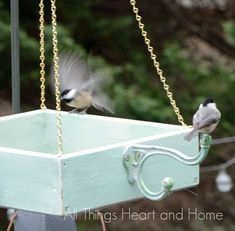 easy platform bird feeder, crafts, gardening, pets animals, woodworking projects Source by mareikes