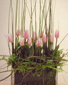 Parallel Tulip arrangement