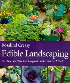 """""""Edible Landscaping, by Rosalind Creasy - $39.95»  For more information on how to use edibles in your landscape, one of the best sources is Rosalind Creasy, who has been promoting the beauty of edibles since the 1980s. Her recent book is now available online or in bookstores."""""""
