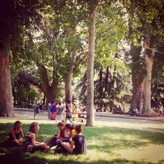 Sabato pomeriggio in Montagnola, Parco della Montagnola Bologna