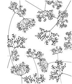 Resultado de imagen de white wild drawings