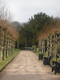 Rufford Country Park, Nottinghamshire