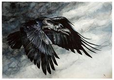 Dark Wings Dark Words by wolf-minori on DeviantArt