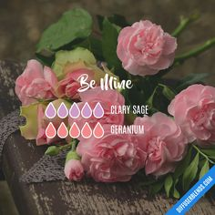 Be Mine - Clary sage and Geranium essential oil blend, sweet and romantic. oil.social/v0rz1cg9