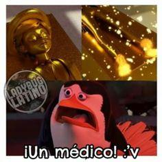 New Memes Graciosos De Ladybug 34 Ideas Lady Memes, Memes Marvel, Ladybug Y Cat Noir, Miraculous Ladybug Fan Art, New Memes, Star Vs The Forces Of Evil, Force Of Evil, Hilarious, Entertaining