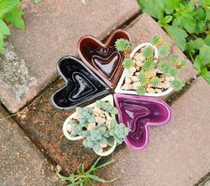 Heart Shape Ceramic Container  for water plants by MyLittlePlants, £2.99