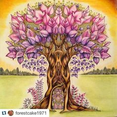 Parece mágica! By @forestcake1971 with @repostapp ・・・#desenhoscolorir My magical tree coloured with polychromos pencils by Faber Castell .. From the Enchanted Forest #florestaencantada #enchantedforest #johannabasford