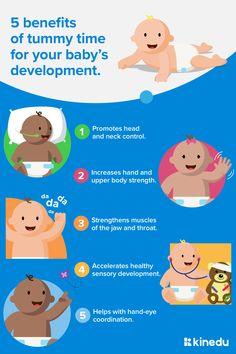 Newborn Activities, Toddler Teacher, Shoulder Muscles, Baby Development, Tummy Time, Rainbow Baby, Lesson Plans, Fun Facts, Kids