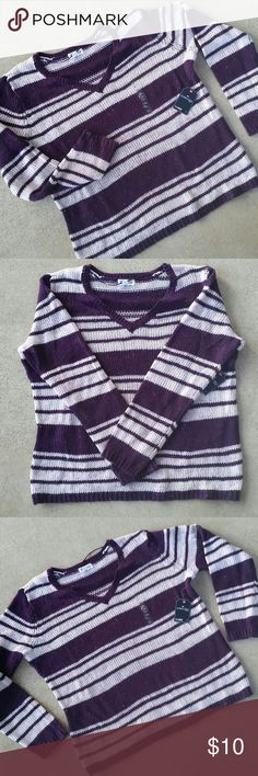 NWT St. John's Bay Maharaja Purple Striped Sweater A brand new, never worn St. John's Bay plum and ivory striped sweater with a touch of sparkle. Made of polyester/acrylic, this sweater will keep you warm and toasty throughout the Fall and Winter. Perfect for a Christmas gift. I bought it because I love sweaters,  but it's just been sitting in my closet waiting to be loved! Smoke-free and pet-free household. St. John's Bay Sweaters V-Necks