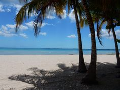 playa larga cuba Cuba, Recovery, Beach, Water, Outdoor, Long Beach, Gripe Water, Outdoors, The Beach
