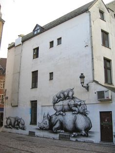 ROA street art. pigs. 000 oiinnns en bruselas