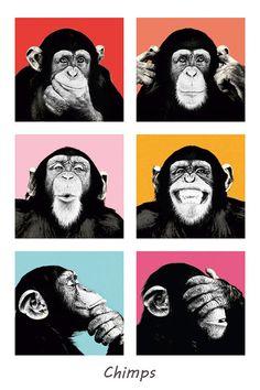 Chimps No. 2