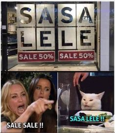 Funny Cat Memes Laughing So Hard Hilarious Kitty Really Funny Memes, Stupid Memes, Stupid Funny Memes, Funny Relatable Memes, Haha Funny, Funny Cats, Lol, Diy Funny, Funny Photo Captions