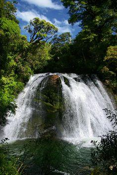 Aniwaniwa Falls, New Zealand