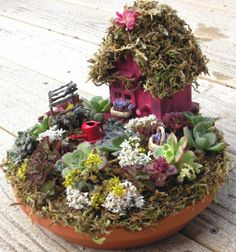 Fairy Garden, also wanted to show you a new amazing weight loss product sponsored by Pinterest! It worked for me and I didnt even change my diet! I lost like 16 pounds. Check out image