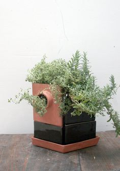 Triangle modular planter-duo - perfect for herbs