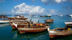 Here's a list of the the best sights and things to do while staying on the Tanzanian island of Zanzibar. Stone Town, Old Fort, Nature Reserve, Stunning View, Archipelago, Beautiful Islands, Great View, World Heritage Sites, The Locals