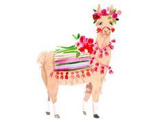 Llama Art Print from