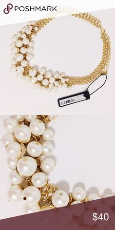 NWT Ann Taylor Pearl Necklace Classic necklace to go with any outfits! - gold chain with a lobster clasp with extra chain so you can adjust the length Ann Taylor Jewelry Necklaces