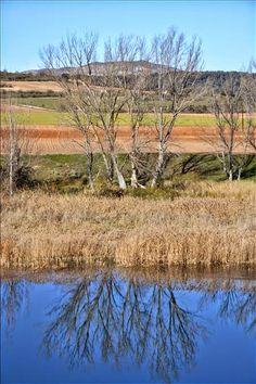 ECO-DIARIO-ALTERNATIVO: Altomira: Sierras, páramos y sotos entre La Alcarria y La Mancha