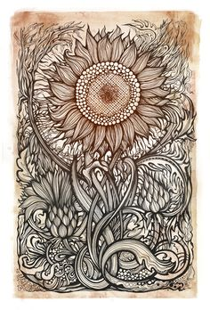 Awesome Ink drawing of Botanical Sunflower Zantangle Art, Doodles, Zentangle Patterns, Zentangles, Art Plastique, Doodle Art, Adult Coloring Pages, Line Art, Amazing Art