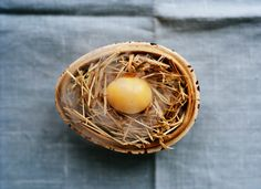 Smoked quail egg from Noma photographed by Ditte Isager