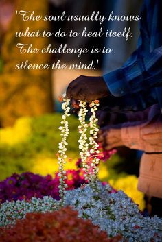 The mind usually knows what to do to heal itself. The challenge is to silence the mind. Wonderful Things, Challenges, Mindfulness, Healing, Consciousness