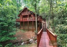 Search for the perfect cabin