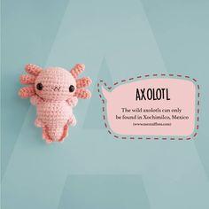 "A → Axolotl She's the chubbiest axolotl in the world I guess hahaha 😍😋💖 . Axolotl: ""Give me a hug, please 🤗"" --- Crochet Animal Patterns, Stuffed Animal Patterns, Crochet Patterns Amigurumi, Crochet Animals, Crochet Dolls, Kawaii Crochet, Cute Crochet, Crochet Crafts, Yarn Crafts"