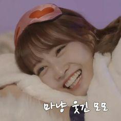 Love You So Much, What Is Love, My Love, Pop Group, Girl Group, Gay, Im Nayeon, Hirai Momo, Dahyun