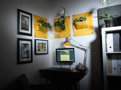 The Green pockets | home