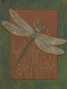 Dragonfly Art 5 x 7 Signed Print Dragon Flies by CarrieAnneWoods, $5.00