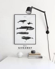 Time for another giveaway - this week you can win a 'Kētos' print for you and your friend ! All you have to do is comment on this picture and tag a friend you would like to win with you. Winners will be announced coming Tuesday good luck ! #cocolapine #giveaway