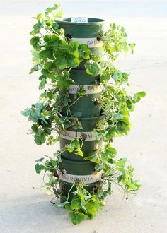 hometalk diy strawberry tower with built in reservoir