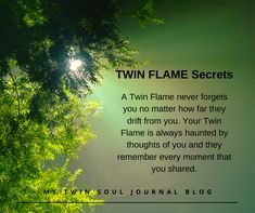 Twin Flame Love Quotes, Twin Quotes, Quotes Quotes, Qoutes, Soul Connection Quotes, Love Connection, Spiritual Connection, 1111 Twin Flames, Twin Flame Runner