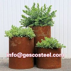 Large ft) corten steel planters for ferns and Saxifraga. Goes with metal of clay wall pot frame. Alternative to Long Tom pots. Corten Steel Planters, Metal Planters, Garden Planters, Large Outdoor Planters, Balcony Garden, Container Plants, Container Gardening, Indoor Gardening Supplies, Natural Pesticides