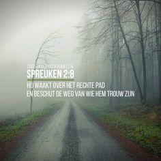 Hij waakt over het rechte pad en beschut de weg van wie Hem trouw zijn. Spreuken 2:8    https://www.dagelijksebroodkruimels.nl/spreuken-2-8/