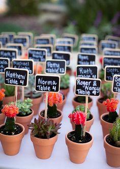 Des cactus pour présenter le plan de table