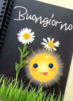 un Buongiorno per tutti - Upload Box Italian Memes, Italian Quotes, Good Morning Greetings, Good Morning Quotes, Day For Night, Good Night, Italian Phrases, Good Afternoon, Pretty Cards