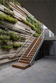 love the greenery in staircase - maybe idea of exterior stairway?