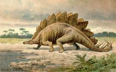 Stegosaurs - Google Search