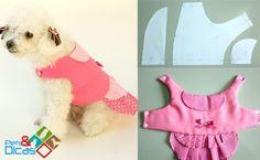 Pets & Dicas: Moldes de roupas para cães grátis