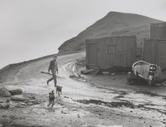 'Leso with his dogs and a gun, Skinningrove', Chris Killip, 1983, printed 2012-13 | Tate