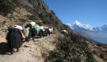 Tent peak (also known as Tharpu chuli) is mixed with trekking to the world famous trail of  Annapurna base camp. Tent peak is located south of the Annapurna Base Camp on the heart of Annapurna sanctuary. Tent peak climbing has always been an attractive challenge due to its outstanding location and the magnificent 360 degree panoramic views of snow-capped mountains of Annapurna Range