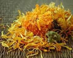 Calendula tea is a gentle herbal drink filled with vitamins and minerals important for skin health and more. Read on and discover its benefits. Arnica Montana, Calendula Tea, Buy Essential Oils, Homemade Beauty Products, Best Anti Aging, Jojoba Oil, Herbal Remedies, Natural Skin Care, Au Natural