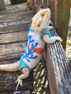 UNDER THE SEA DISNEY PRINT XLRG SLEEVELESS BODY SHIRT 4 UNISEX BEARDED DRAGON | eBay