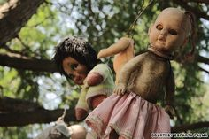 7 of the freakiest places on the planet   CNN Travelor the Island of the Dolls, is the stunningly morbid creation of a man named Don Julian Santana, who lived as a hermit on an island for some 50 odd years until his death in 2001.