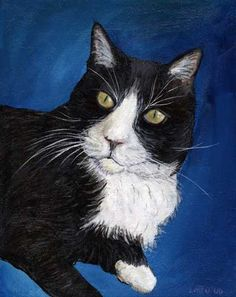 Tuxedo Cat Pet Portrait painting of a black and white tuxedo cat with yellow eyes. The cat faces the viewer looking slightly off to one side in a regal cat pose. The cat's pet portrait is accented against a royal blue background.