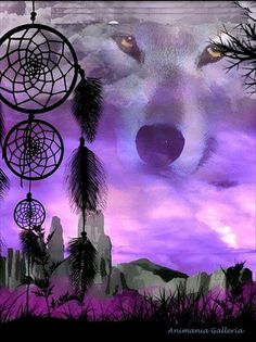 Dreamcatcher, purple wolf in the sky